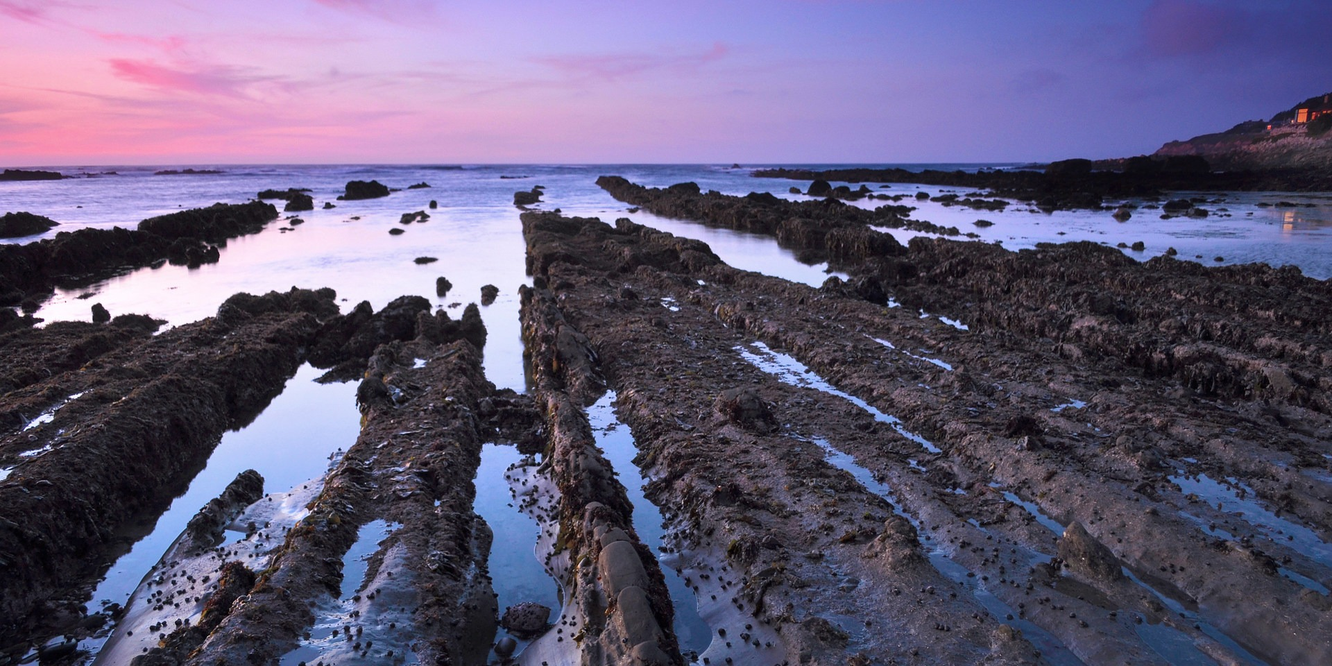9 of the west coasts best tide pools outdoor project 9 of the west coasts best tide pools nvjuhfo Gallery