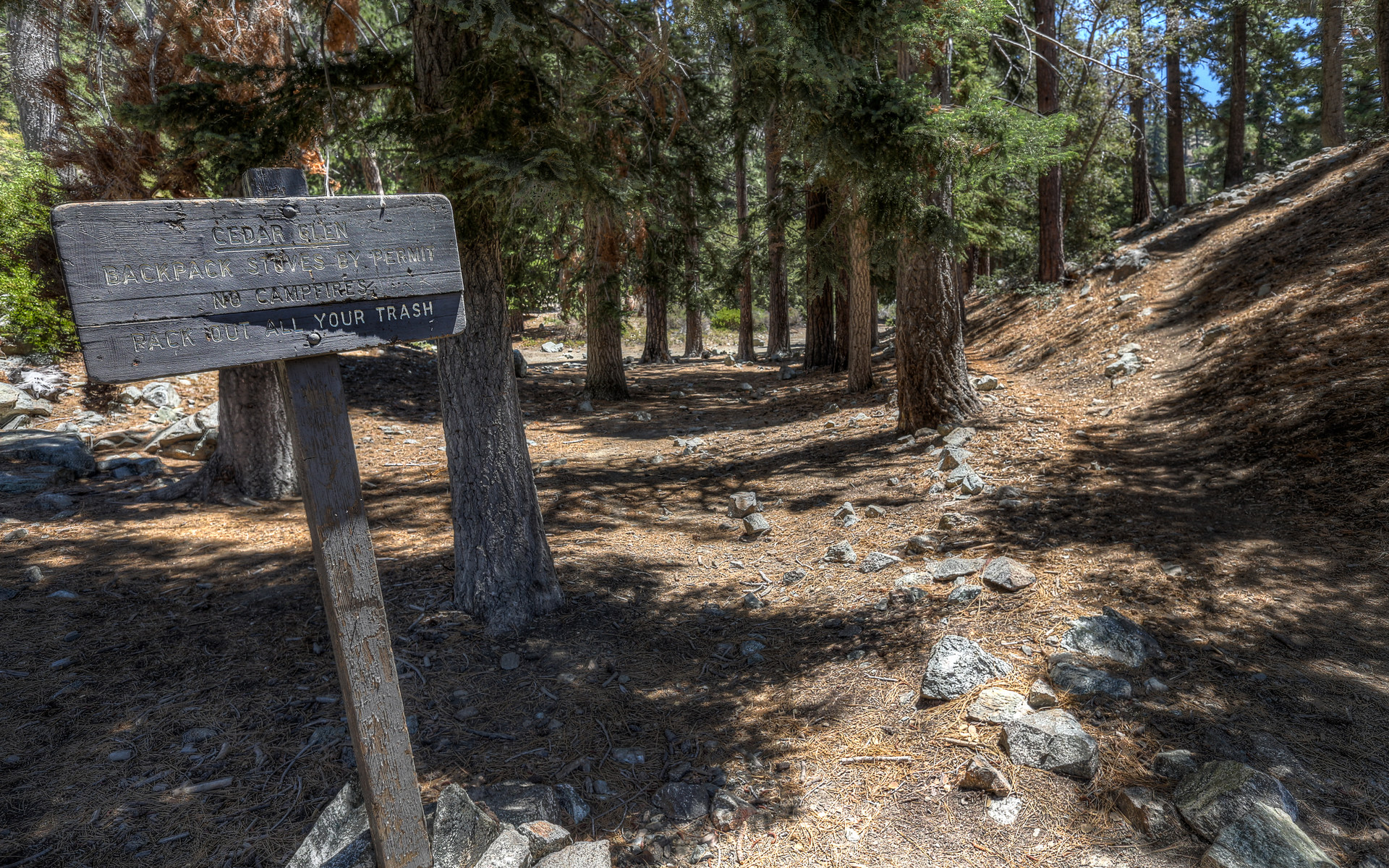 Cedars camp ground
