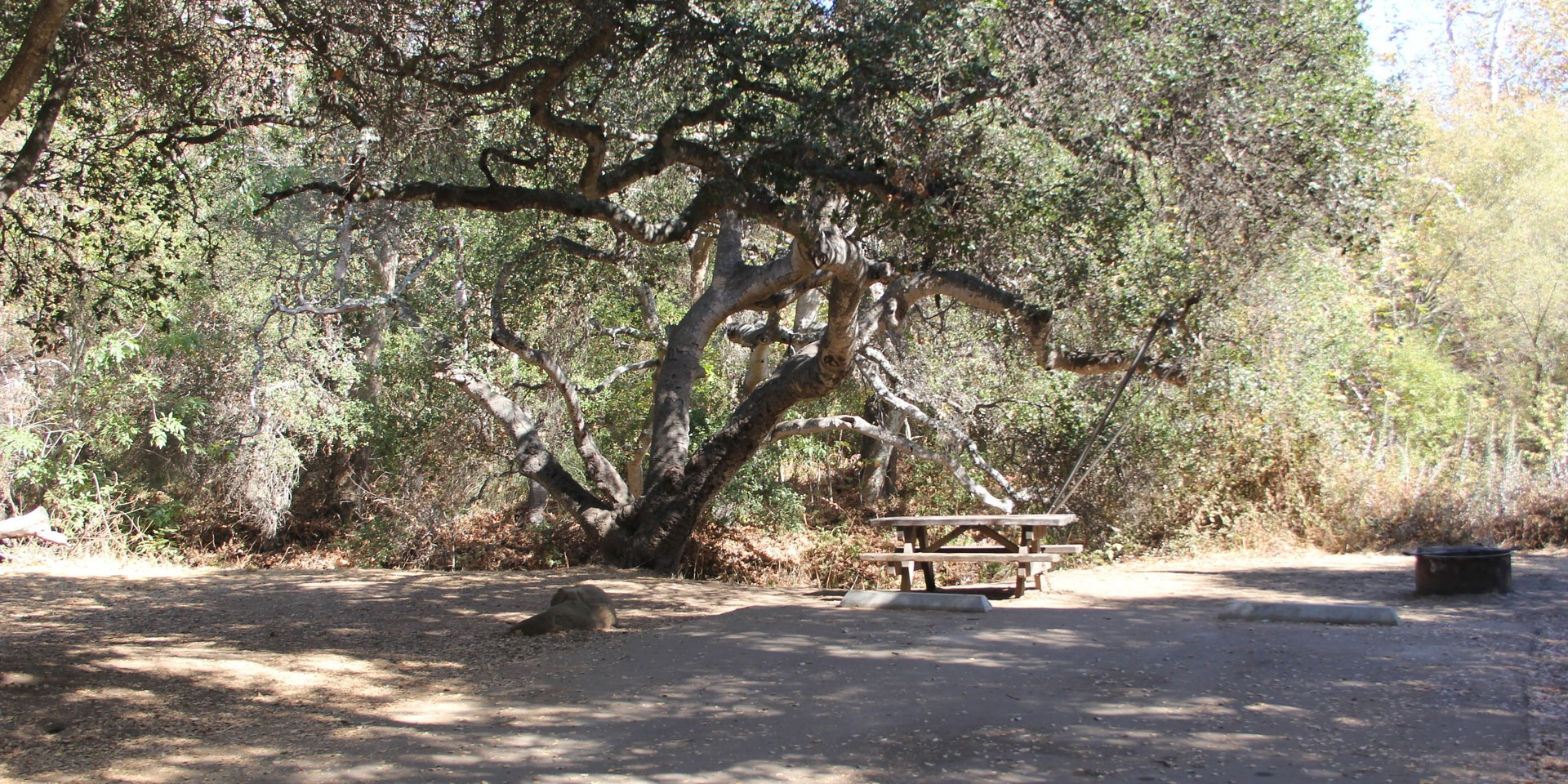 el capitan state beach campground | outdoor project