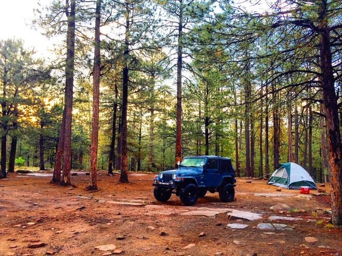 How to Camp for Free on U.S. Forest Land (Reilly Travels Guide)