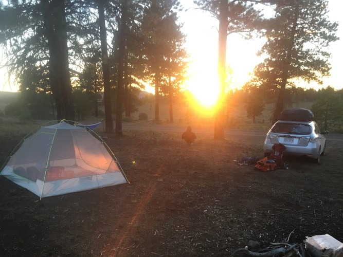 Archer Camping Area, Mt Mee