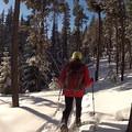 - Paulina Creek + Falls Loop Trail