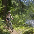 Salmon Creek Trail.- Southern Oregon's Best Mountain Bike Trails
