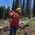 Myrna getting in on some limbing.- The Bold Betties: Idaho Trails Association Women's-Only Trail Maintenance