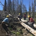 One of our final trees to cut, a little tight cutting.- The Bold Betties: Idaho Trails Association Women's-Only Trail Maintenance