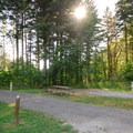 RV sites in the park's Woodard Creek Campground- Beacon Rock State Park Campground