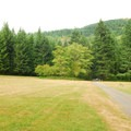Looking over entry drive and grass meadow.- Beacon Rock State Park Group Campground