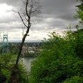 View looking north over the St. Johns Bridge.- Ridge Trail