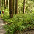 - Pittock Mansion/Upper Macleay Trail