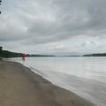 Sauvie Island beach, looking north over the Columbia River.- Sauvie Island, Warrior Rock Lighthouse Trail