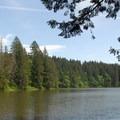 View of Round Lake looking southeast.- Lacamas Creek Loop Trail
