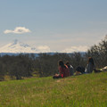 Looking southwest toward Mount Hood (11,250').- Tom McCall Point Hike