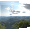 View looking southwest from the Kings Mountain summit.- Kings Mountain