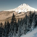 Mount Hood (11,250').- Tom Dick + Harry Mountain
