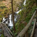 - Hamilton Mountain Hike