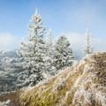 A pastel blue sky on the trail to Hamilton Mountain.- Hamilton Mountain Hike