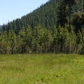 Small meadow at the trailhead across from Devils Lake.- Moraine Lake in the Three Sisters Wilderness