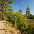 Deschutes River Trail.- Dillon Falls