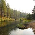 A small dam on Tumalo Creek makes for a perfect swimming hole.- Shevlin Park, Aspen Hall Trail