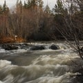 Wychus Creek.- Lower Whychus Creek Trail