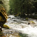 Eagle Creek, a tributary of the Clackamas River.- Eagle Creek Hike (Clackamas River Tributary)