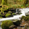 - Eagle Creek Hike (Clackamas River Tributary)