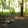 One of four backcountry campsites at Alder Flats.- Alder Flats Hike + Campsites