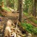 Hiking to Goat Lake.- Goat Lake via the Snowgrass Trailhead