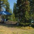 Point Campground campsite.- Elk Lake, Point Campground