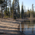 Beach at Little Fawn Campground.- Elk Lake, Little Fawn Campground