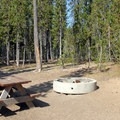Typical Campsite.- Elk Lake Resort Campground