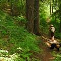 - Bald Butte Hike