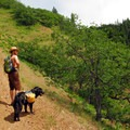 Contributor Asmund Tweto and Sir Albert on the trail.- Bald Butte Hike