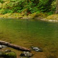 Swimming hole near the northeastern trailhead.- Salmon River, Old Trail