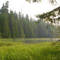 Timothy Lake.- Timothy Lake Loop Trail