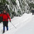 Contributor Emily Gillard enjoying the slight descent on the Beaver Marsh Loop.- Barlow Pass Sno-Park Beaver Marsh Loop