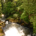 Pothole Falls.- Lacamas Creek Park
