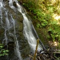Woodburn Falls.- Lacamas Creek Park