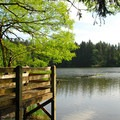 Round Lake.- Lacamas Creek Park