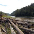 View looking east down the Sandy River.- Dabney State Park