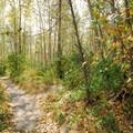 - Glenn Otto Community Park