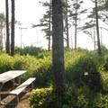 Hiker and biker camp.- Cape Lookout State Park