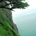 View from along the Cape Lookout Trail, 400 feet above the Pacific.- Cape Lookout State Park