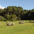 Beverly Beach State Park's day-use picnic area.- Beverly Beach State Park