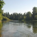 View of Clackamas River looking northeast from the Riverbend day-use area.- Milo McIver State Park