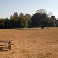 Park's off-leash pet exercise area.- Milo McIver State Park