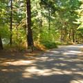 Milo McIver State Park Campground.- Milo McIver State Park Campground