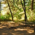 Typical campsite.- Milo McIver State Park Campground