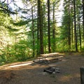 Typical campsite.- Dougan Creek Campground