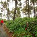 - Yaquina Bay State Recreation Site